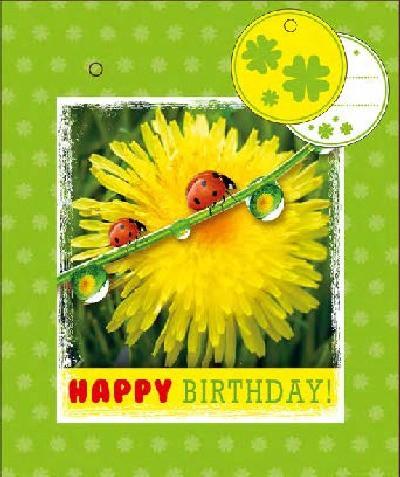 3D Kleine Geschenktüte 6 x 12,5 x 15cm Happy  Birthday