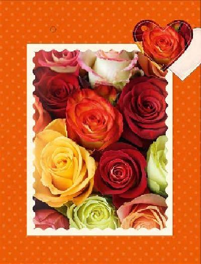 3D Geschenktüte 8 x 15 x 19,7cm Rosen - ohne Text