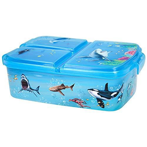 Depesche 11445 - Dino World Brot-Dose für Kinder aus Kunststoff, Lunchbox im Underwater Design, ca. 18,3 x 13,7 x 5,7 cm groß, unterteilt in 3 Fächer, mit Klippverschluss, ohne BPA und Weichmacher