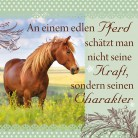 Geschirrtuch 036 mit Spruch: An einem edlen Pferd schätzt man nicht seine Kraft, sondern seinen Charakter