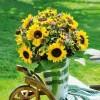 Depesche 3D Foto Klappkarte quadratisch 015 ohne Text - Sonnenblumenstrauß