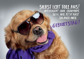 Depesche 3D Foto Medi Klappkarte 010 Motiv Hund