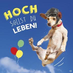Geburtstagskarte mit Musik 3868-013e Hoch sollst du Leben!