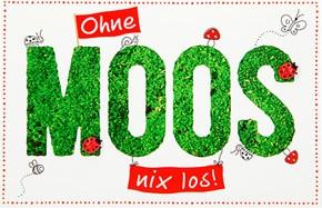 Klappkarte für Geldgeschenke 2239-035b Ohne Moos nix los!