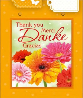 3D Kleine Geschenktüte 6 x 12,5 x 15cm Thank you, Merci, Danke,