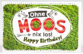 Klappkarte für Geldgeschenke 2239-002 Ohne Moos nix los!