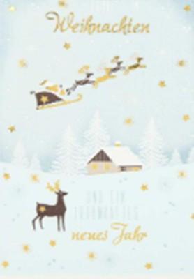 Lustige Weihnachtskarte Klappkarte Frohe Weihnachten und ein traumhaftes...