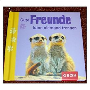 Zitate Buch Gute Freunde