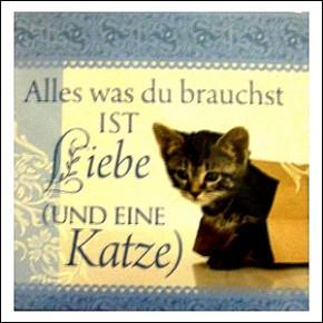 Geschirrtücher mit Spruch Liebe und Katze