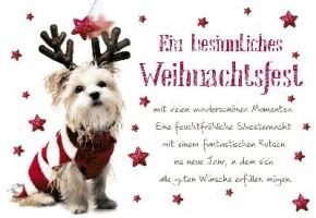 Lustige Weihnachtskarte 8634-019