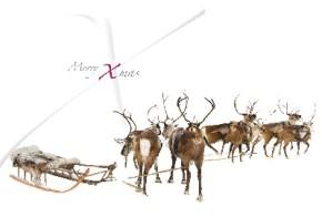 Lustige Weihnachtskarte 8634-022