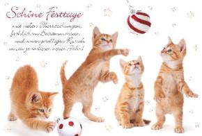 Lustige Weihnachtskarte 8634-027