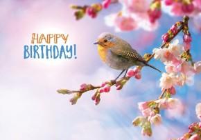 Depesche 3D Foto Klappkarte 016 Happy Birthday!