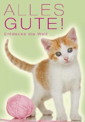 Pink Flamingo Geburtstagskarte Klappkarte Alles Gute! Entdecke die Welt und las..