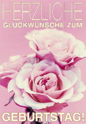 Pink Flamingo Geburtstagskarte Klappkarte Herzliche Glückwünsche zum Geburtstag!