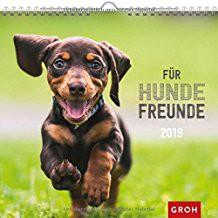 Groh Wandkalender 2019 Für Hundefreunde