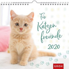 Groh Wandkalender 2020 Für Katzenfreunde